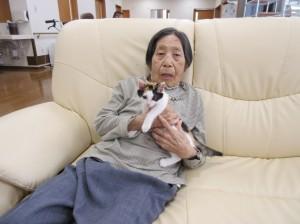 猫と秋本さん