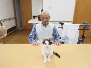 猫と桐井さん